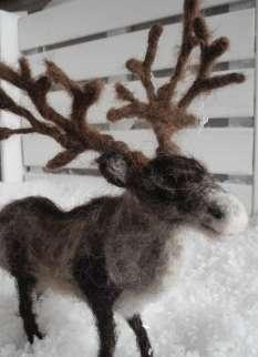 reindeer_01